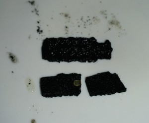 After the acid had done its work the bare die was visible in both ICs